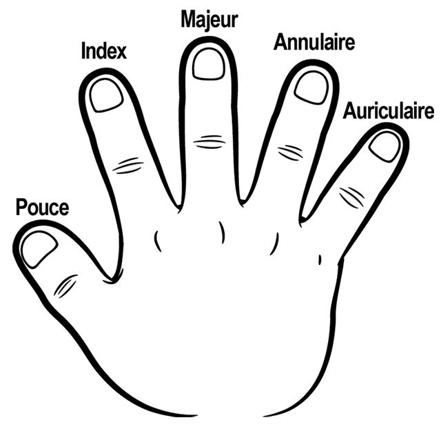 Plan de la main pour rubik's cube